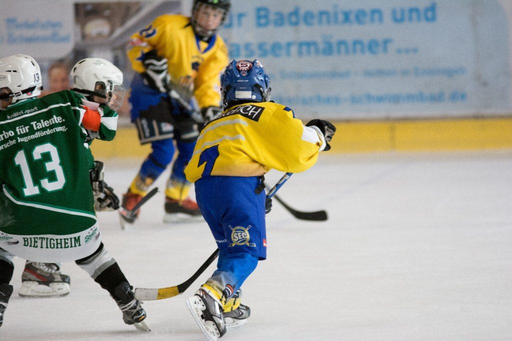 eishockey 2. bundesliga ergebnisse